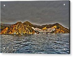 Santa Catalina Island Acrylic Print by Cheryl Young