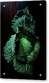 Savoy Cabbage Acrylic Print by Ingwervanille