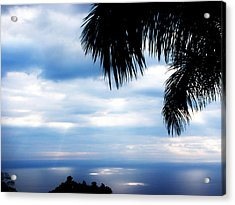 Sea Sky And Palm Tree Acrylic Print by Rosvin Des Bouillons