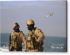 Seals Aboard A Rigid-hull Inflatable Acrylic Print by Stocktrek Images