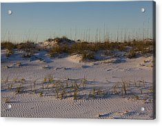 Seaside Dunes 4 Acrylic Print by Charles Warren