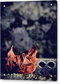 Season Of Fire Acrylic Print by Odd Jeppesen