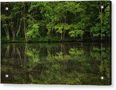 Season Of Green Acrylic Print by Karol Livote