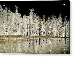 Serenity Acrylic Print by Bonnie Bruno