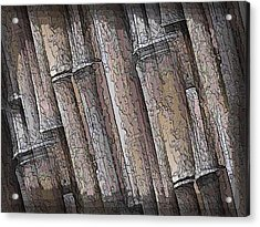 Shades Of Bamboo Acrylic Print by Tim Allen