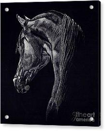 Shadow Acrylic Print by Yenni Harrison