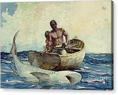 Shark Fishing Acrylic Print by Winslow Homer
