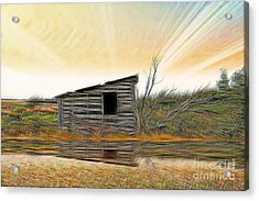 Shed In The Field Acrylic Print by Vickie Emms