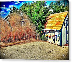 Shed Some Light Acrylic Print by Jaclyn Dilling