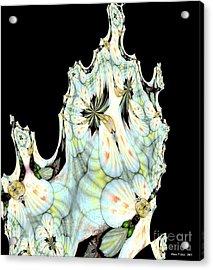 Shell Art 1 Acrylic Print by Maria Urso