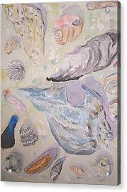 Shells Acrylic Print by James Cox