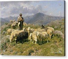 Shepherd Of The Pyrenees Acrylic Print by Rosa Bonheur