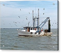 Shrimp Boat And Gulls Acrylic Print by Robert Brown