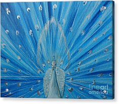 Silver Peacock Acrylic Print by Julie Brugh Riffey