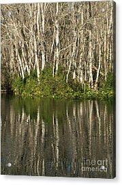 Silver River Reflections Acrylic Print by Theresa Willingham