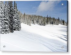 Silverstar Meadow Snow Covered Alpine Meadow Silver Star Acrylic Print by Andy Smy