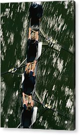 Skullers On The Potomac River In D.c Acrylic Print by Brian Gordon Green