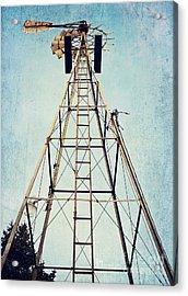 Sky High Acrylic Print by Pam  Holdsworth