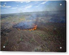 Slash And Burn Agriculture Acrylic Print by Alexis Rosenfeld