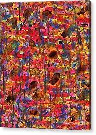 Slow Drip Acrylic Print by TB Schenck