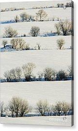 Snowy Landscape Acrylic Print by Jeremy Woodhouse