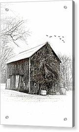 Snowy Morning Acrylic Print by Mary Timman