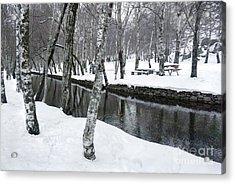 Snowy Park Acrylic Print by Carlos Caetano