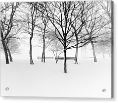 Snowy Trees And Park Benches Acrylic Print by Meera Lee Sethi