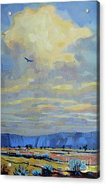 Soaring Acrylic Print by Donald Maier