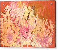 Soft Echoes Acrylic Print by Anne-Elizabeth Whiteway