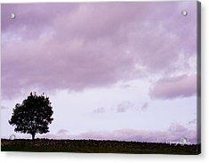 Solitude - Denbigh Moors Acrylic Print by Georgia Fowler