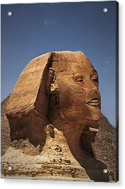 Sphinx Petra Acrylic Print by Nafets Nuarb