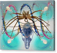 Spider Dna Acrylic Print by Adam Long