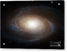 Spiral Galaxy M81 Acrylic Print by Nasa