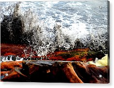 Splash On The Wood Acrylic Print by Nelly Avraham