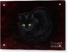 Spooky Acrylic Print by The Stone Age