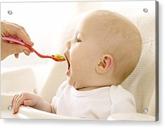 Spoon-feeding Acrylic Print by Ruth Jenkinson