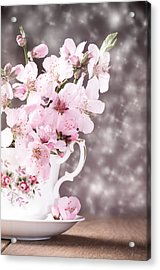 Spring Blossom Acrylic Print by Amanda And Christopher Elwell