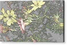 Spring Blossoms In Abstract Acrylic Print by Kim Galluzzo Wozniak