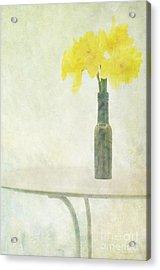 Springtime Acrylic Print by Marion Galt