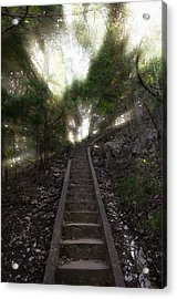 Stairway To Heaven Acrylic Print by Ricky Barnard
