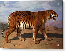 Stalking Tiger Acrylic Print by Rosa Bonheur
