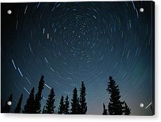 Star Trails, Sandilands Provincial Acrylic Print by Mike Grandmailson