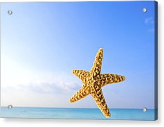 Starfish In Front Of The Ocean Acrylic Print by Richard Wear