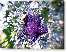 Starfish In The Surf Acrylic Print by Venetta Archer