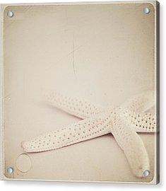 Starfish Acrylic Print by Laura Ruth