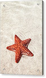 Starfish Under Water Acrylic Print by Matteo Colombo