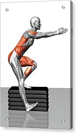 Step-down Exercises Acrylic Print by MedicalRF.com