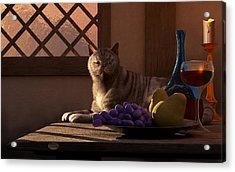 Still Life With Wine Fruit And Cat  Acrylic Print by Daniel Eskridge