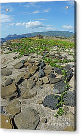 Stones On Sand At Punta Vincente Roca Acrylic Print by Sami Sarkis